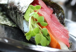 image-tuna_temaki_img_1688_good_crop_34812.jpg